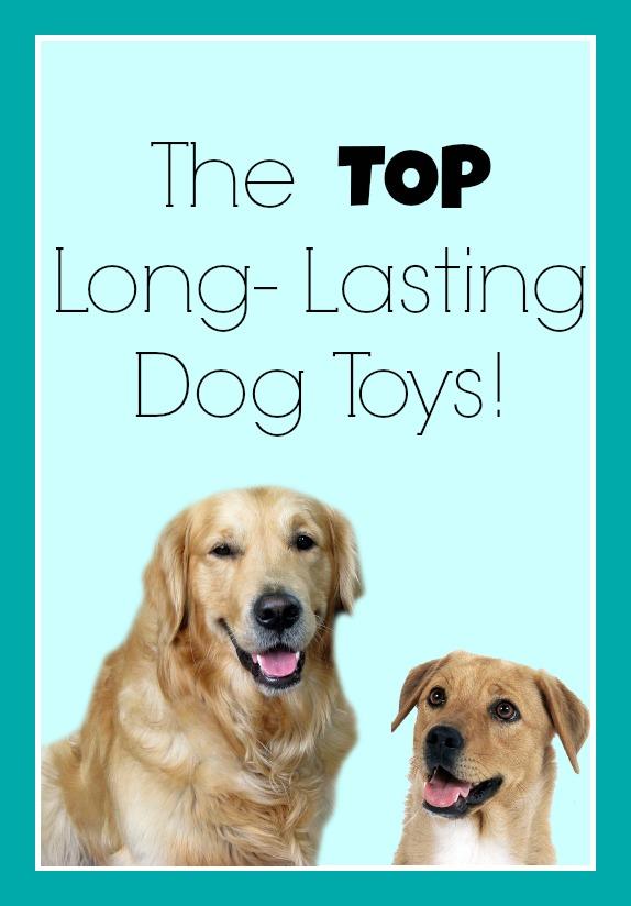 thetoplonglastingdogtoys