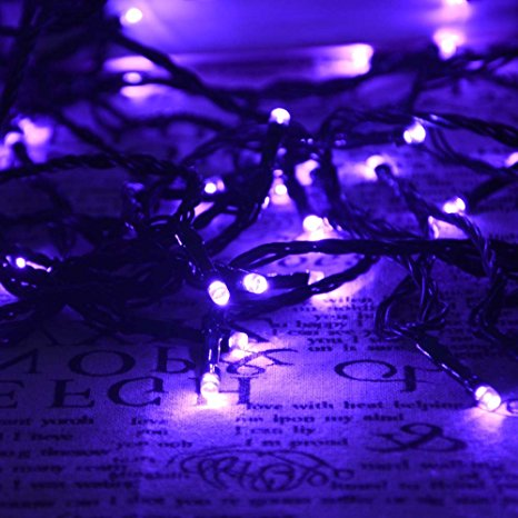 purple-lights